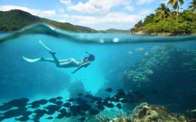 Dykning og dykkerudstyr